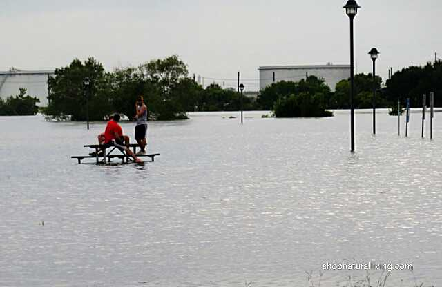 Picture of people on top of picnic table at flooded park near Houston, TX, Hurricane Harvey